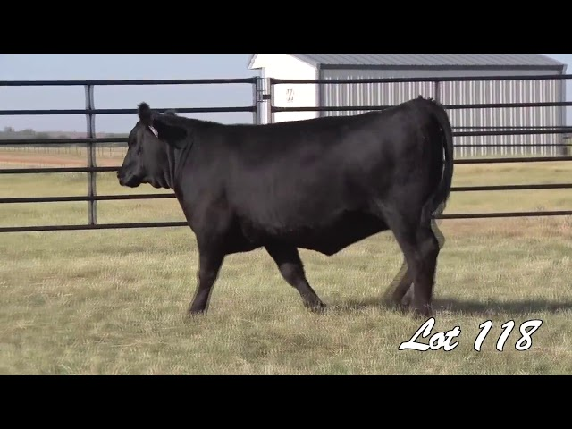 Pollard Farms Lot 118