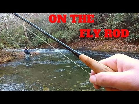 INCREDIBLE Fly Fishing TROUT Slam