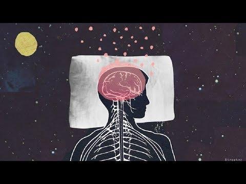 كيف يساعد النوم على التذكر والمذاكرة ؟