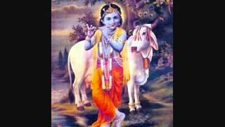 Bhaj Govinda Jai Gopala.wmv