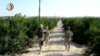 """""""الدفاع"""" تنشر فيديو جديد لـ""""جهود القوات في تنفيذ القانون بسيناء"""""""