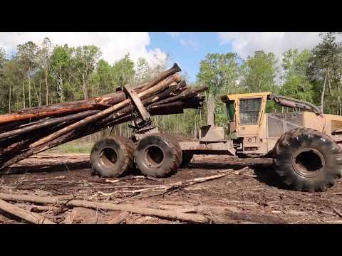 Swamp Loggers With Bobby Goodson, Lets Go Into The Swamp
