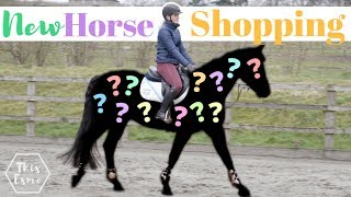 New Horse Shopping! - The Search Begins | This Esme