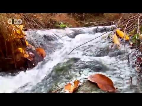 Kayvan Karashi-Fall in Boukan(Boukan-Iran)