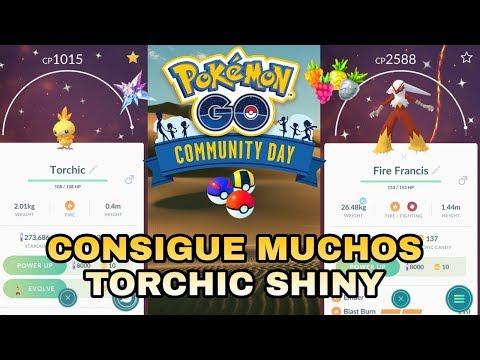 ¡CONSIGUE MUCHOS TORCHIC SHINY! ¡GUÍA Y TRUCOS DÍA DE LA COMUNIDAD! POKEMON GO!