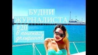 СОЧИ | Прогулка на катере | В поисках дельфинов | NO FILTERS | БУДНИ ЖУРНАЛИСТА #20