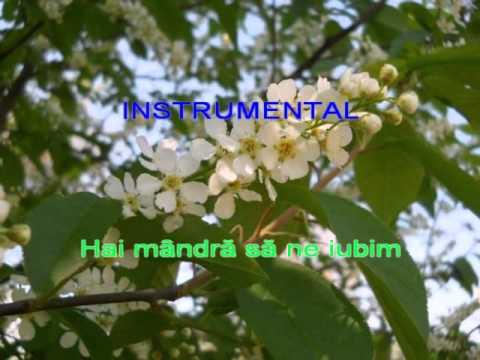 floare de malin karaoke