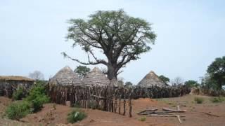 Nanfo Ismael Diaby - Möhlou Wélé N