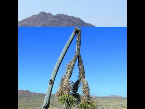 Senators Toni Atkins and Anthony Portantino prevent Senate from vote on protecting the desert