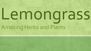 Lemongrass health benefits - Lemongrass nutrition facts - Health benefits of lemongrass