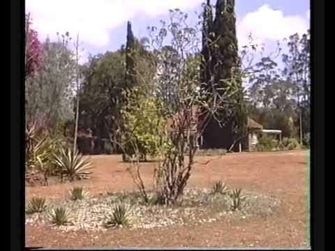 Karen Blixen House Nairobi