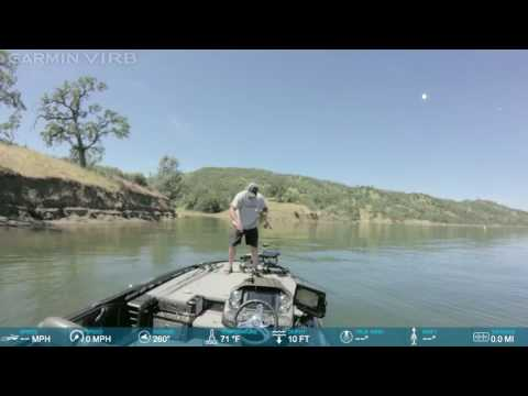 Spawning Bass at Lake Berryessa