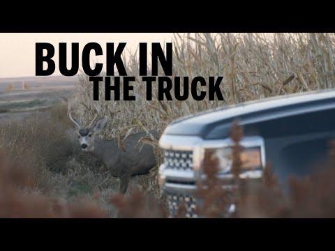 BUCK SHOT NEXT TO TRUCK | Nebraska Mule Deer Bowhunting