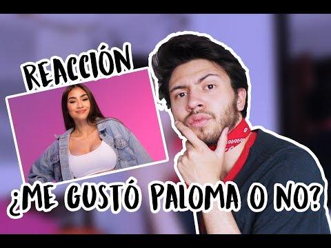 REACCIÓN A PALOMA MAMI - NOT STEADY  Niculos M