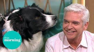 Phillip & Britain's Smartest Dog Make Special Connection | This Morning