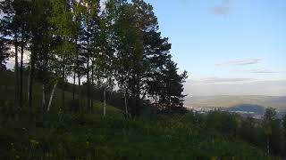Звуки природы и города.