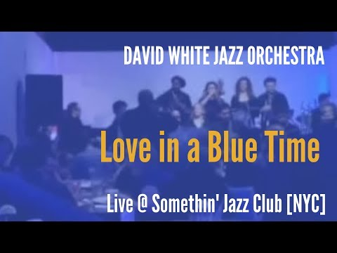 🎵 David White Jazz Orchestra - Love in a Blue Time - (live @ Somethin' Jazz Club) mp3