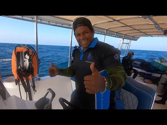 Abulthama Reef Bahrain