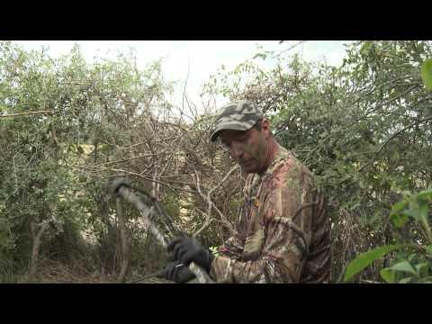 The dove bow hunter.