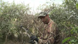 The dove bow hunter.