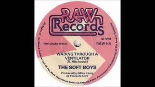 The Soft Boys-Wading Through A Ventilator