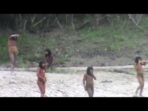 Uncontacted Amazon Tribe Makes Contact in Madre de Dios, Peru