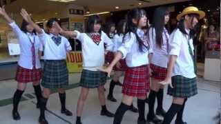 RYUKYU IDOL (琉球アイドル)(リュウキュウアイドル) 2曲目(ハイサイ...