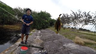 this was one tough fishing challenge ft 1rod1reelfishing sunrise fl