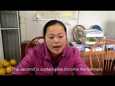 Thanh Xuan Organic Cooperative Director