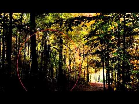Imagens de aparições de Slender Man(postado por GirlWolf ...