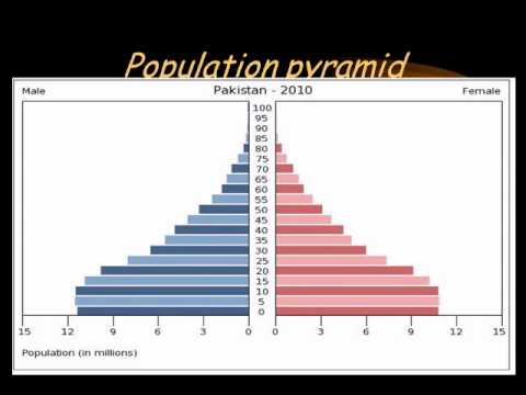 essay theory of demographic transition Phases of a demographic transition in a detailed analysis, dyson (19) affirms that the demographic transition theory lays a strong platform to understand the population change that happens over a period of time.