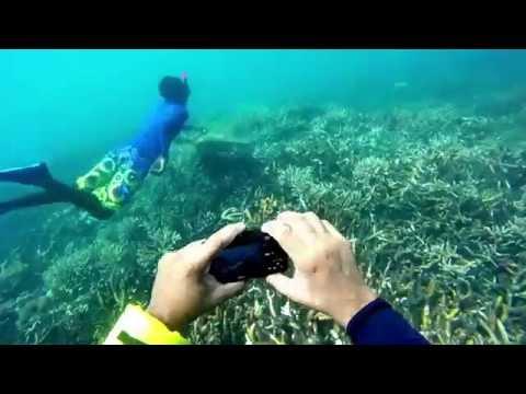Snorkeling in pigeon island nilaveli