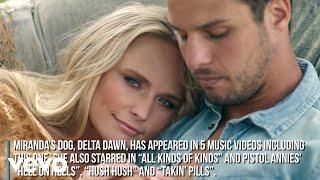 Miranda Lambert - Settling Down (Music Video Fun Facts)