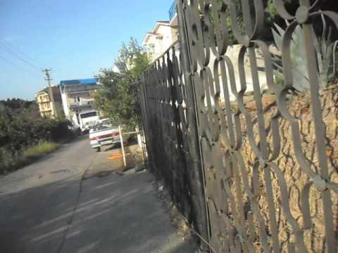Гостевой дом Ника Витязево, ул Красноармейская, 94 1