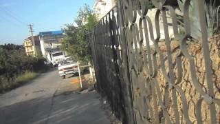 видео Гостевые дома в Адлере