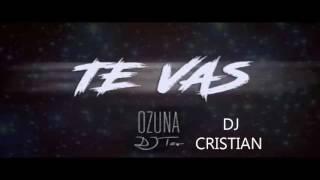 Te Vas - DJ TAO - DJ CRISTIAN Ozuna Remix