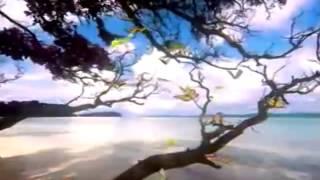 Yeh Dil Sun Raha Hai - Sansara