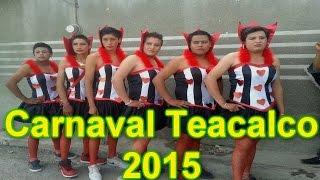 Carnaval Santa Apolonia Teacalco 2015