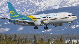Discount airline back in business