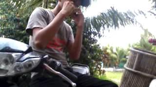 Indonesia pusaka harmonika versipn