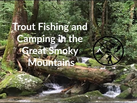 Trout Fishing And Camping In The Great Smoky Mountains