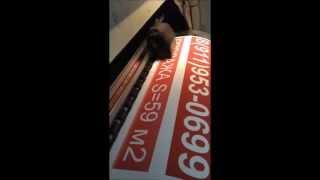 Изготовление и печать изображения на баннере!(Наша рекламно-производственная компания Рекламная мастерская занимается широкоформатной печатью изображ..., 2015-02-06T11:47:26.000Z)