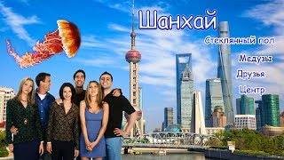 """Шанхай. Куда сходить, цены, локации. Жемчужина востока. Океанариум. Кафе """"Friends"""""""