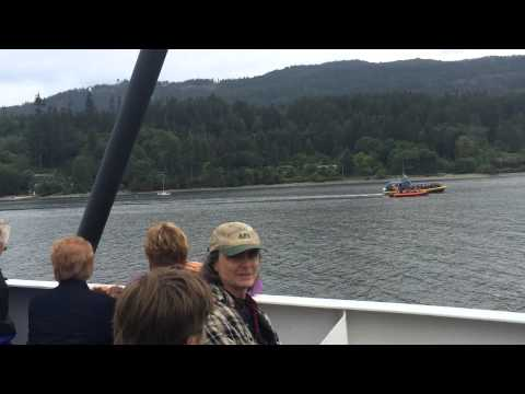 Salt Spring Island - Orca Pod in Fulford Harbour