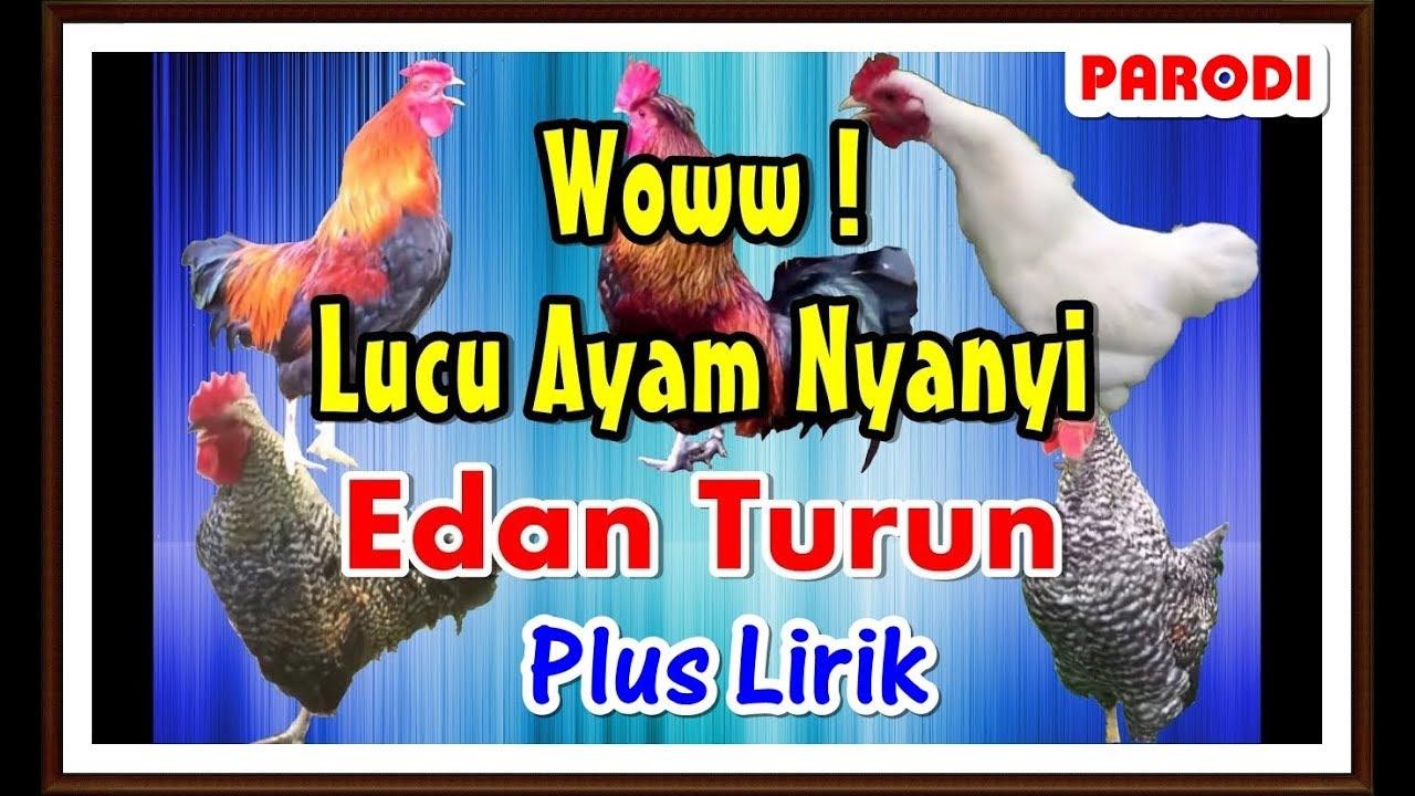 Download Lagu Jaran Goyang Versi Ayam Kita Nella Kharisma