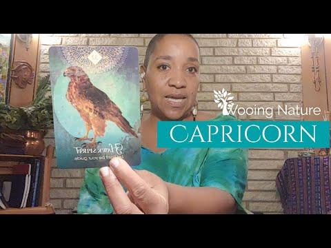 capricorn's-got-the-hawk-eye-on-ya-|-july-2020