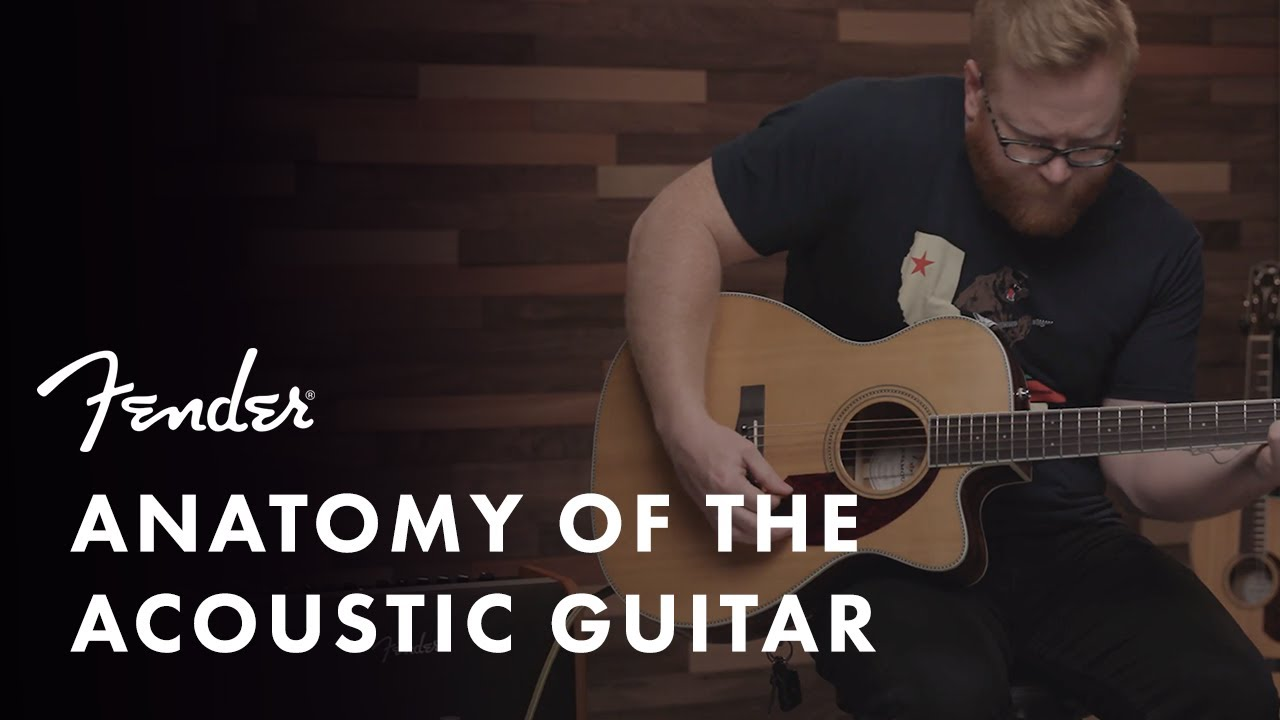 Anatomy of the Acoustic Guitar | Fender