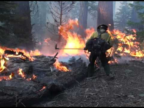 Wildland Fire Recruiting Video