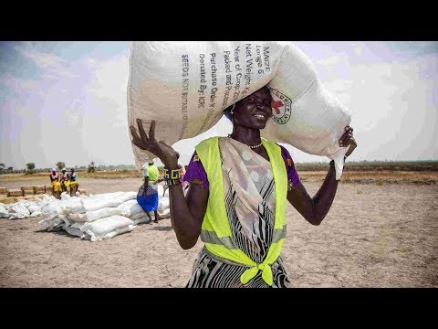 UN injects 15.5 mln USD into emergency response in S. Sudan