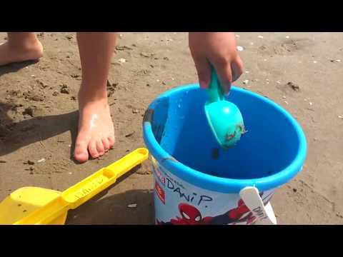 A LA PLAYA! con los Juguetes de CARS DISNEY PIXAR - RAYO MCQUEEN Y MATE se bañan en la playa